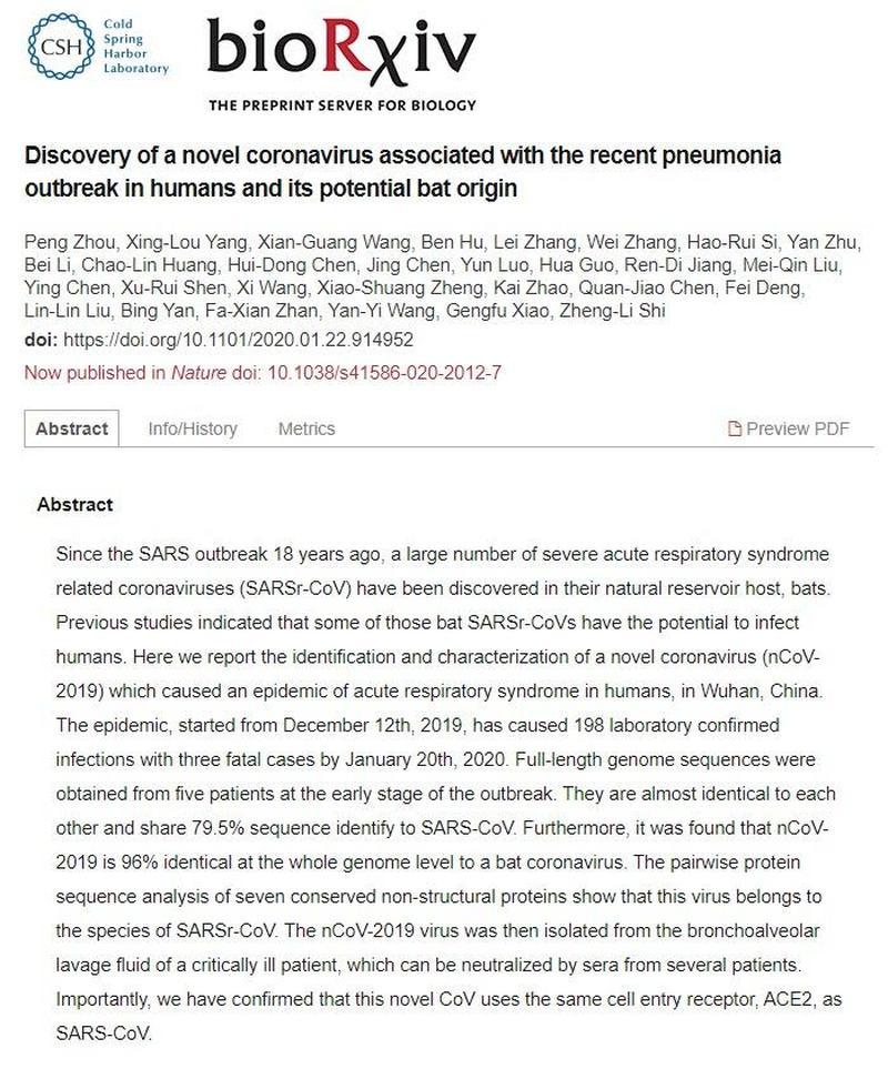 Discovery of a novel coronavirus
