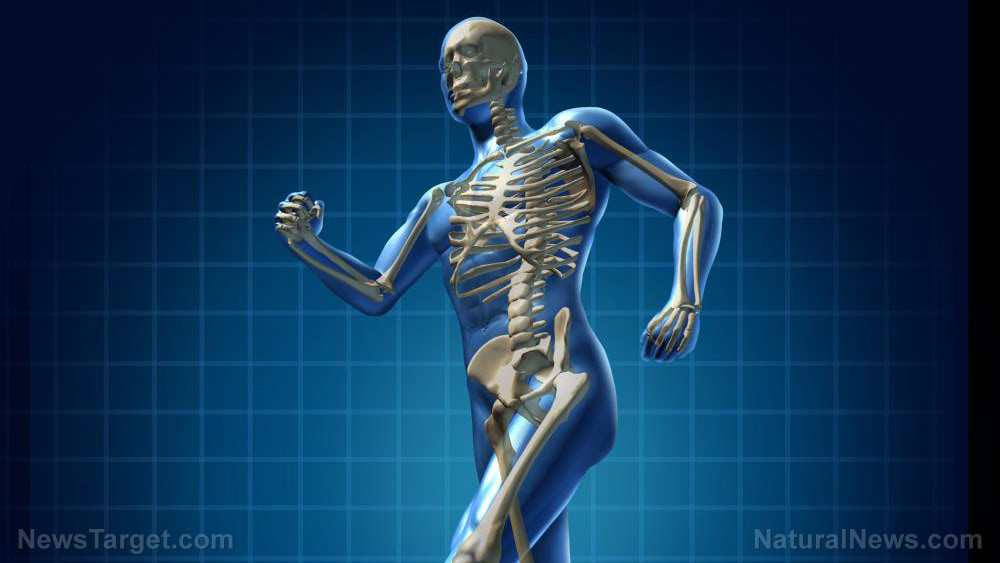 Natural soy isoflavone daidzein can boost bone formation, research says