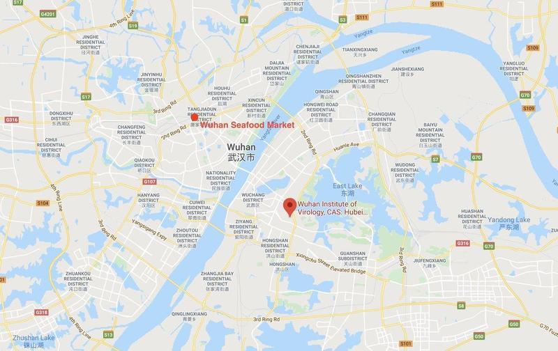 Wuhan map