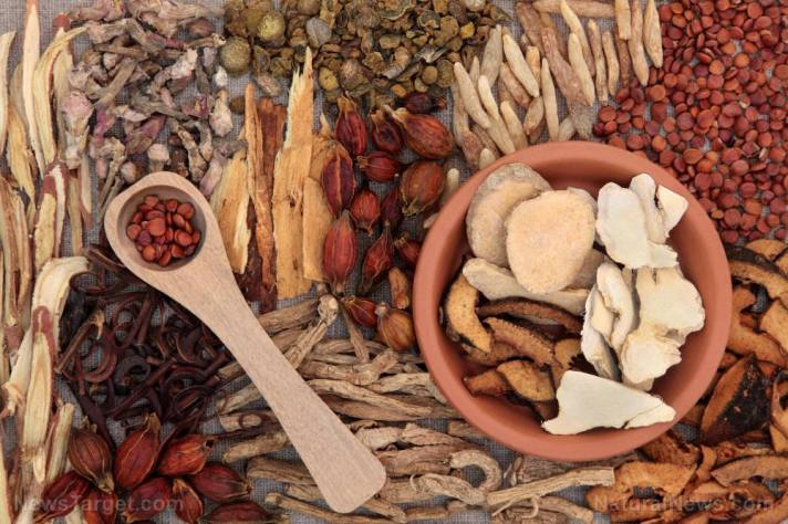 Here's some good news: Traditional Chinese Medicine could help prevent coronavirus infections