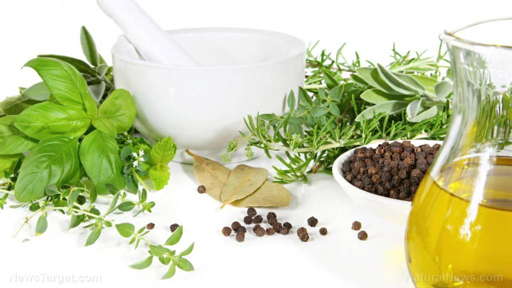 Woman heals her psoriasis with infection-fighting properties of wild oregano oil