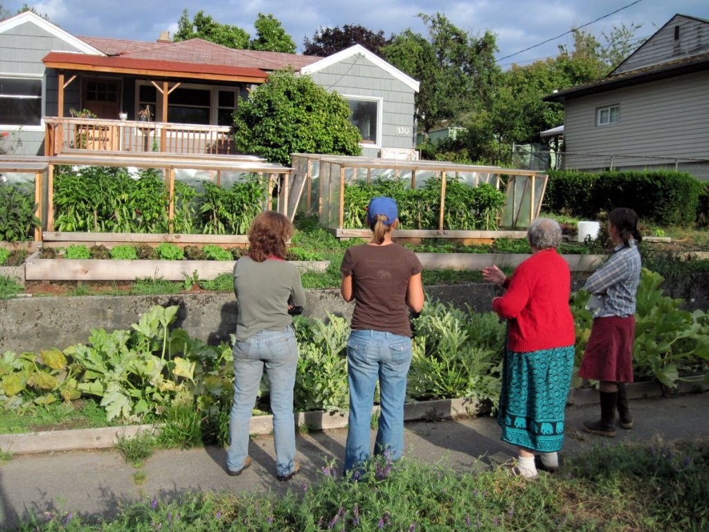 Tips for prepping on a backyard homestead