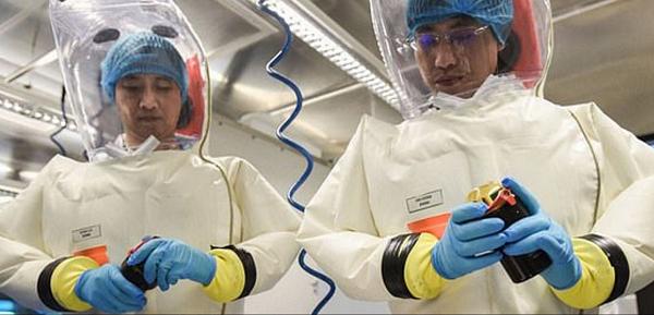 Virus expert at Wuhan lab denies COVID-19 lab leak theory