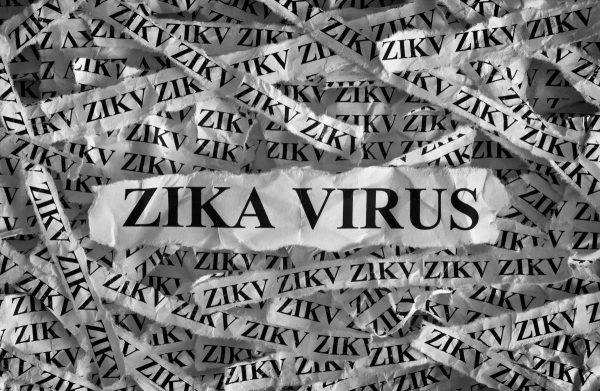 Zika virus vaccine will genetically re-engineer your DNA