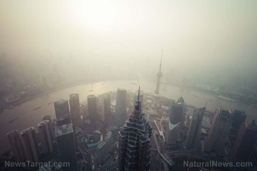 Petroleum-based chemicals in cleaning products, perfumes and pesticides now cause as much air pollution as vehicles