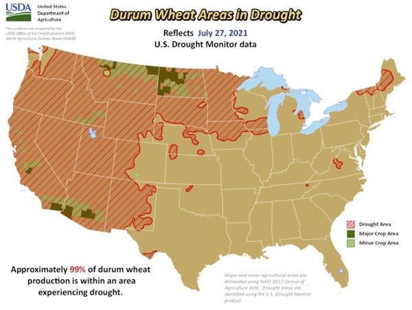 durum wheat drought vs crop usa