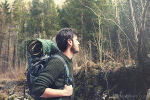 Hiker Walking Green Forest