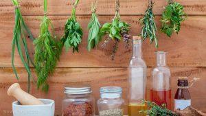 Assorted Hanging Herbs Parsley Oregano Sage Basil