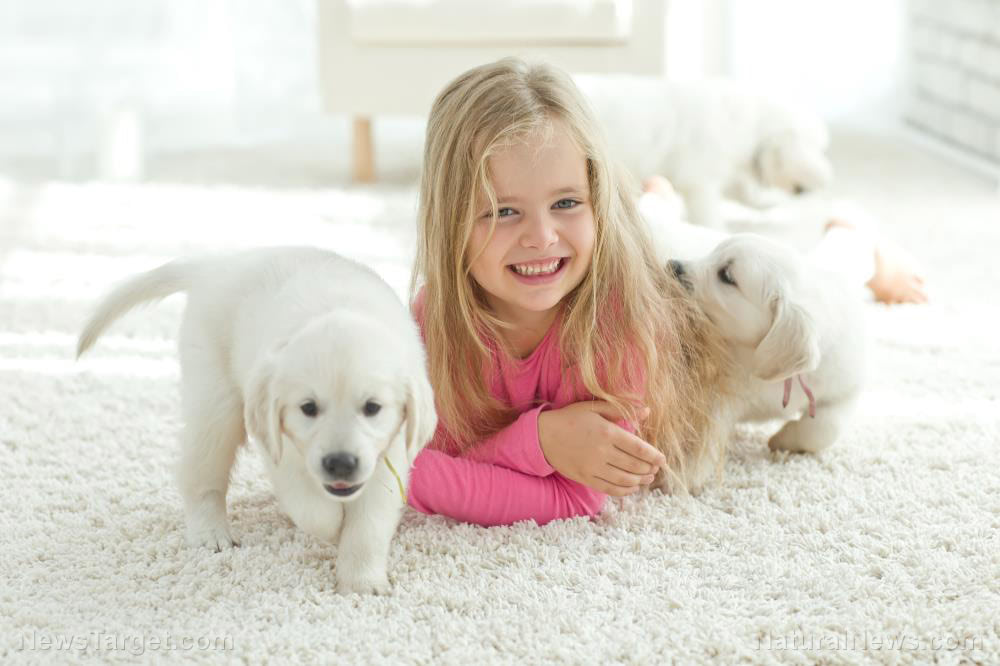 Home cleaning hacks: Non-toxic DIY carpet cleaner recipe