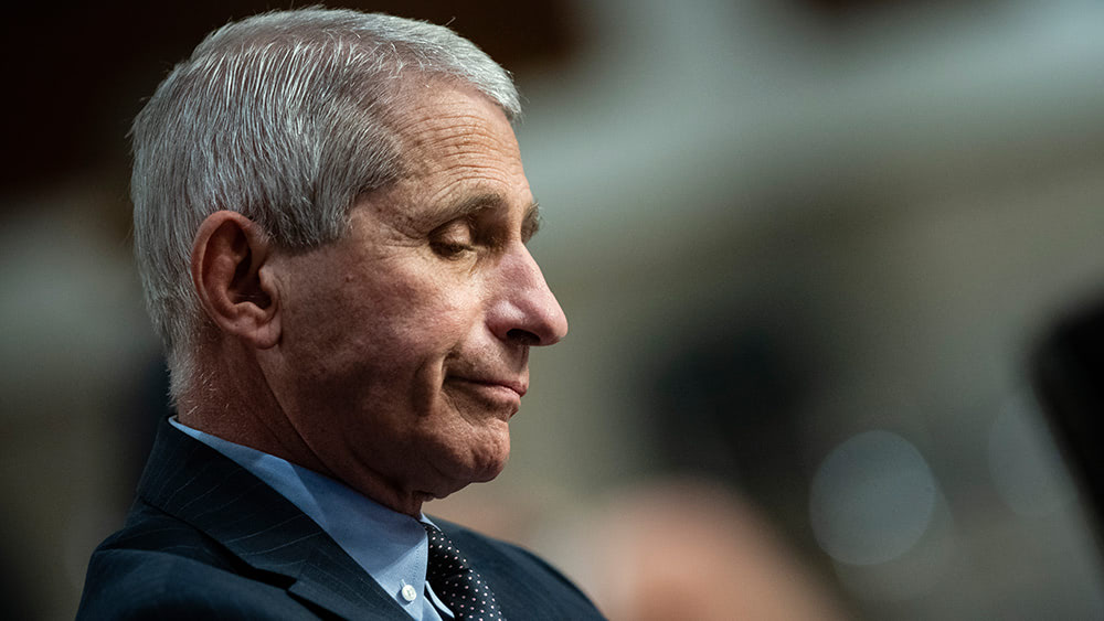 Fauci's upcoming book removed from online shops amid criticism he profits from the pandemic