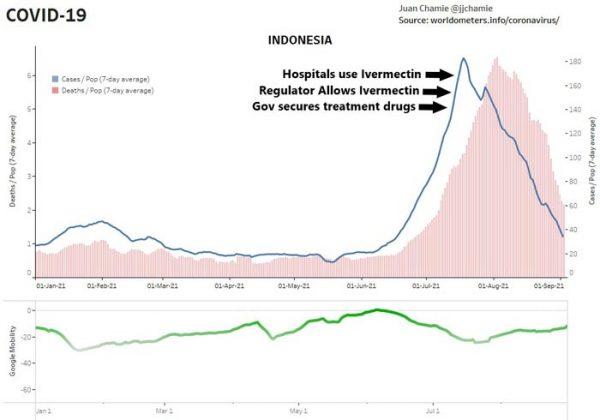 ivermectin graph