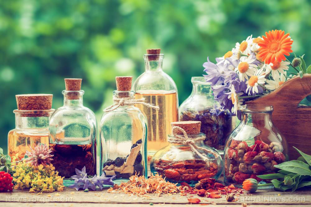 STUDY: Early treatment with proven natural remedies defeats covid