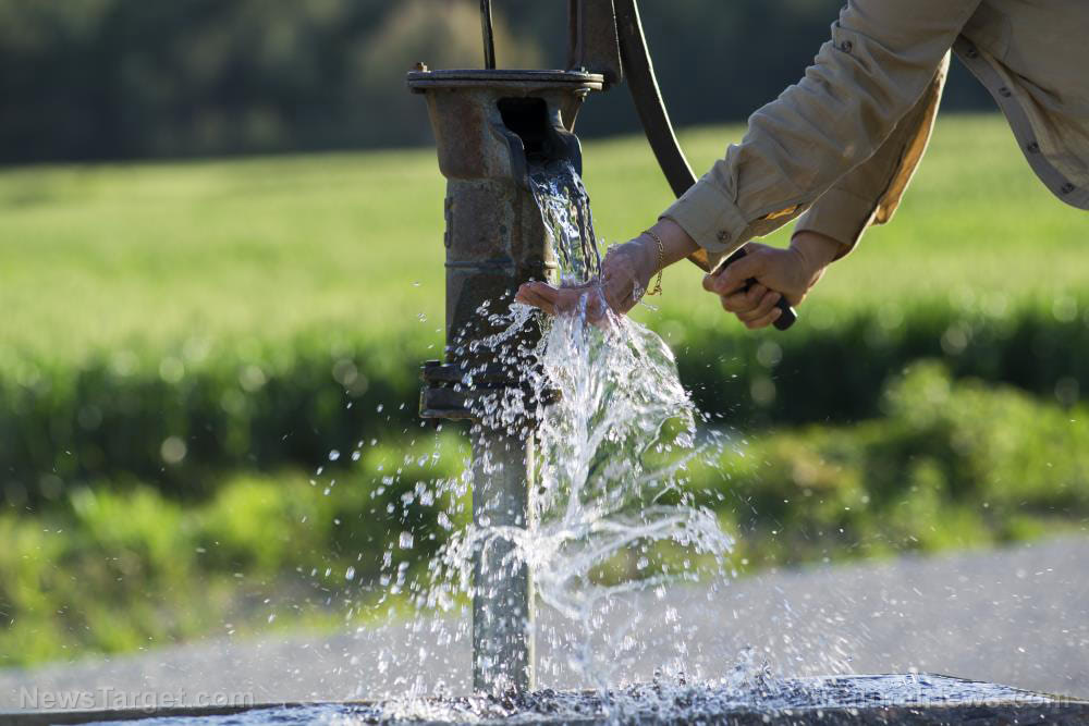 Homesteading 101: How to conserve water on your property